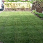 Turfing & Fence