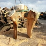Chainsaw carved play structure – Bradford