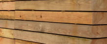 Untreated Larch – 50mm x 200mm