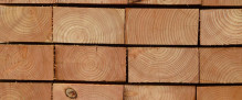 Untreated Larch – 50mm x 100mm