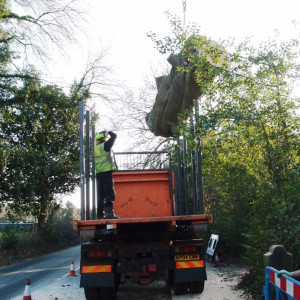 Timber feedstock from essential tree maintenance